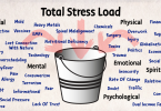 The Bucket of Stressors